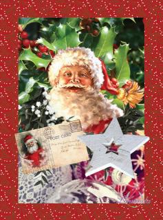 7309d8f344fe Látka Rudolph- panel 3 obrázky